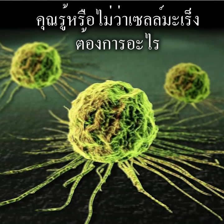 คุณรู้หรือไม่ว่าเซลล์มะเร็งต้องการอะไร