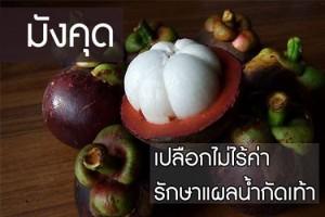 มังคุด ผลไม้ที่ใช้เป็นยาสมุนไพรไทย