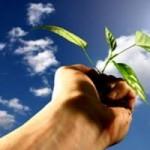 <b>วันสำคัญของไทย วันที่ 14 มกราคม วันอนุรักษ์ทรัพยากรป่าไม้ของชาติ </b>