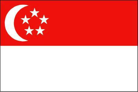 ธงชาติอาเซียนประเทศสิงคโปร์