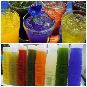 ฟรี 12 สูตรน้ำสมุนไพร ทำง่ายขายดีขายรวย ดื่มชื่นใจ